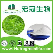 Private Label Tropical Fruit Liquid Stevia 2 oz Non-GMO from NSF GMP USA Vendor