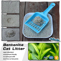 Chinese High Quality Pet Products Kitty Sand OEM&ODM