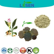Vomiting Control Black Dried Ginger Extract, Curcuma zedoaria (Christm.) Rosc