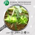 tribulus terrestris extracto de hierbas en polvo saponinas esteroides hombres aumentar las hormonas de la testosterona