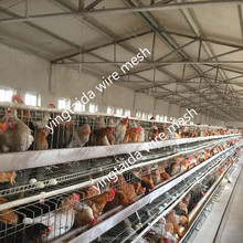Hot Selling poultry house steel structure Chicken Farm Building (ISO9001)