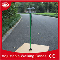 CY6121 Free sample available T-handle walking stick with light and alarm