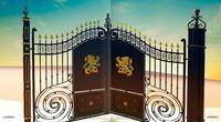 Classic used wrought iron door gates design