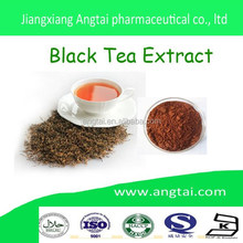 Hot sale Black Tea Extract Theaflavin 20% 40%