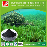 Skin care seaweed extract for cosmetics