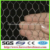 hexagonal wire mesh gabion/gabion box(Anping ,China)