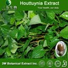 Houttuynia Extract,Houttuynia Extract Powder 4:1,10:1 - Supplied by 3WBE