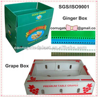 White or clear PP corrugated plastic ginger box corflute box for packing ginger