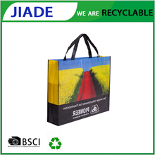 BSCI Factory Reusable Plastic foldable Shopping Bag