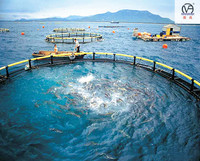 HDPE high quality circular floating deep sea aquaculture cages Storm and wave resist