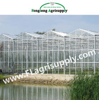 Venlo Glass Greenhouse for tomato cucumber flower horticulture