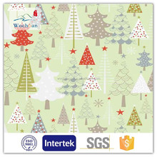 C100 20*12 40*42 cotton printed brushed wholesale printed double-sided flannel fabric