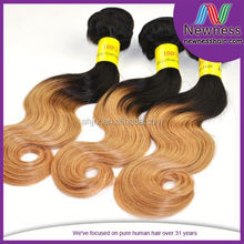 Guangzhou Distributors cheap ombre hair extension No tangling and no shedding