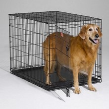 high quality security fence dog kennels selling dog kennels beautiful dog kennels