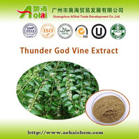 High demand Tripterygium wilfordii / thunder god vine extract ratio5:1 for pancreatic cancer