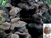 10% 20%Polysaccharides Auricularia Auricula L Black Wood Ear Extract Powder Natural Health Product