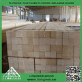 lvl andamios plank de madera