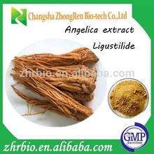 Chinese herbal 100% pure Natural Angelica root extract Powder