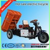 Three wheel electric motorcycle/electric motorcycle direct sale