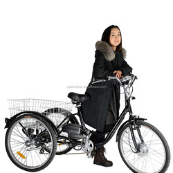 Beiji Vehicle three wheel electric motor bike