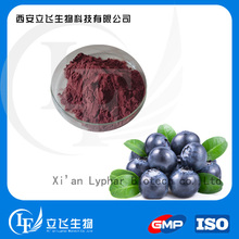 100% Natural Anti-Aging Blueberry Extract Powder