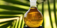Refined palm cooking oil (CP8 and CP10)