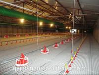 Plastic slats for poultry, plastic floor for chicken farms/poultry farm equipment (Professional Manufacturer)