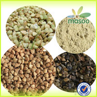 China bulk roasted groats buckwheat