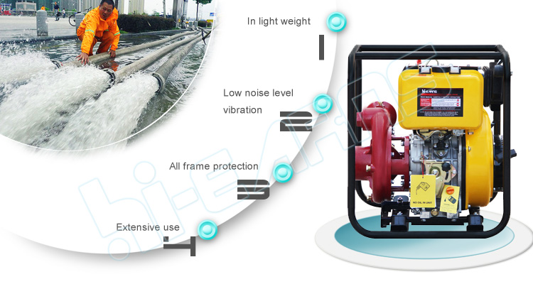 3 inch cast iron pump-a.jpg