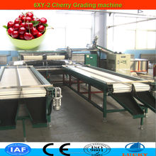 Top brand in China industrial high quality cherry tomato machine