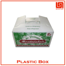 Hot sale high quality plastic packaging fruit container