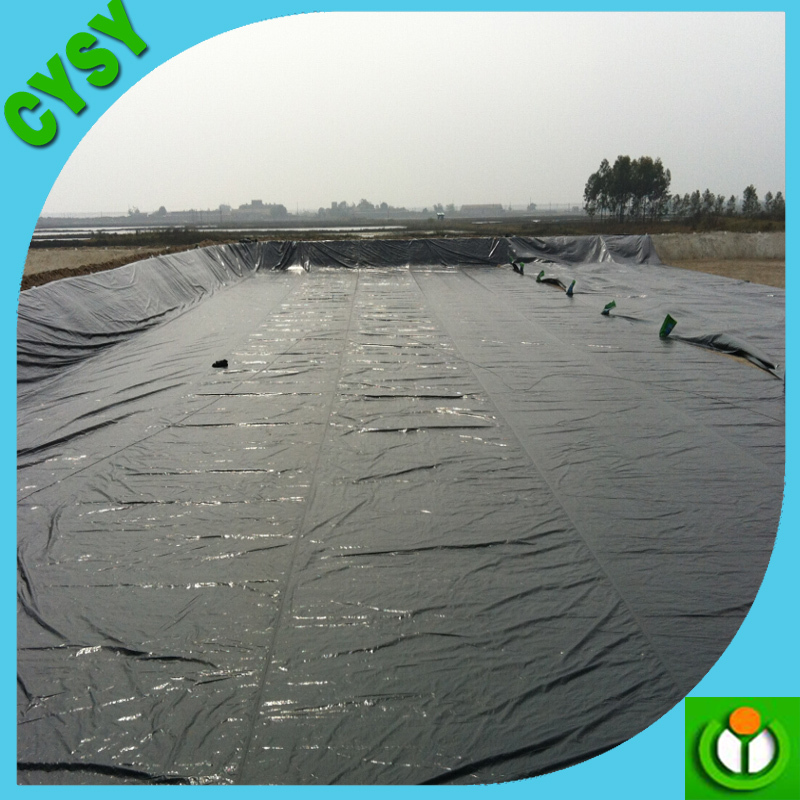 Waterproof Hdpe Pond Liner In Geomembrance Fish Pond Liner