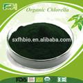 Orgánica Chlorella en polvo /hoja