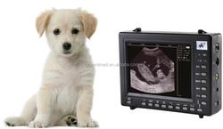 portable ultrasonic diagnostic devices palm type ultrasonic diagnostic