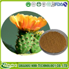 Top Quality From 15 Years experience manufacture High Quality Caralluma Fimbriata Extract