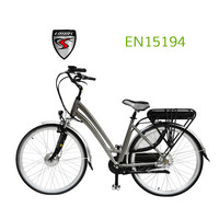 full power motor easy rider china made electric bike (KCEB028)