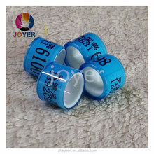 beautiful plastic transparent full plastic bands cheapest custom with name phone photo pigeon ring