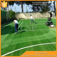 China golden quality plastic grass mat/artificial turf for soccer chinese artificial grass,