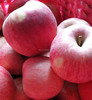 Indian qinguan apple with factory price wholesale new fresh qinguan apple with good price
