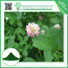 Nature free sample Red Clover Extract 40% Isoflavones from China supply