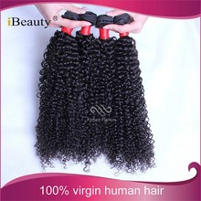 afro curly hair extension weft cheap malaysian human hair curly