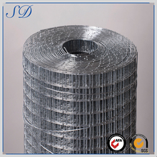 Professional Manufacture 1X2 Galvanized Welded Wire Mesh