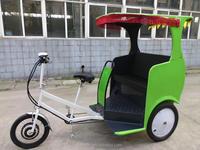 newest style motorized rickshaws for sale