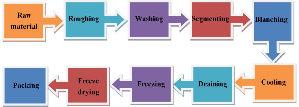 High quality fruit processing machine-vacuum freeze drying machine & vacuum fruit freeze dryer LG200