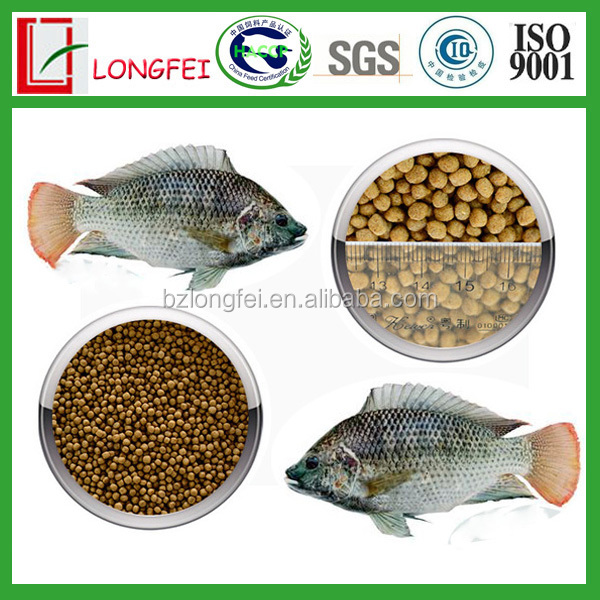 China factory supply high protein floating fish feed for for Does fish have protein