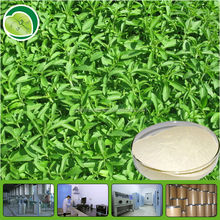 organic stevia /bulk pure stevia extract/stevia bulk