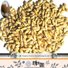 Dried Malt Extract/dry Malt Extract/wholesale Malt Extract