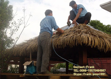 Guangzhou Synthetic Thatch Roofing for Cottage