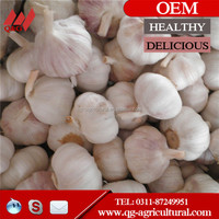 new crop Chinese pure white and normal white garlic hot sale