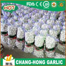 2014 Hot Sale Natural Garlic